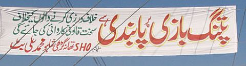 Kite flying ban on Basant.jpg