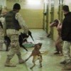 Abu Gharib prison