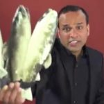Shahid Nazir the One Pound Fish Man to sing for PML-N Election Campaign
