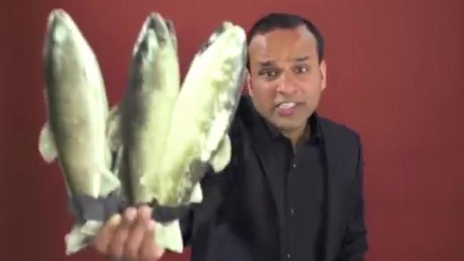 Shahid Nazir One Pound Fish Man