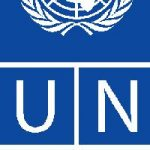 Over 750,000 UNDP trained government staff joined election duties