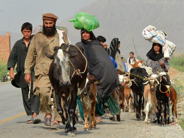 Waziristan IDPs